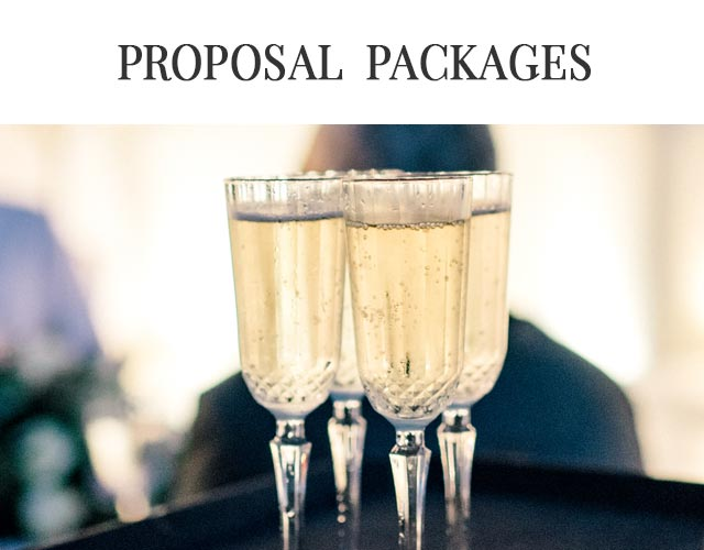 Proposal Packages